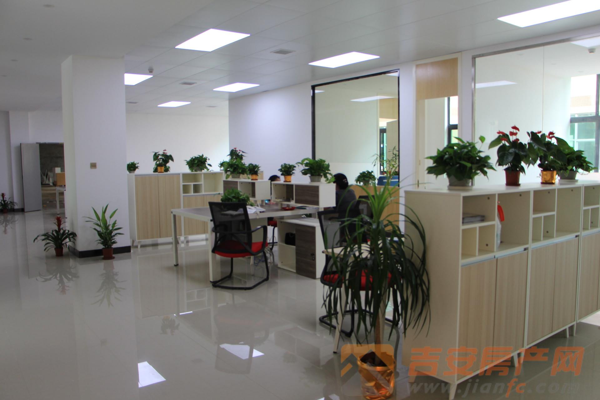 第九企业社区实景图-吉安房产网