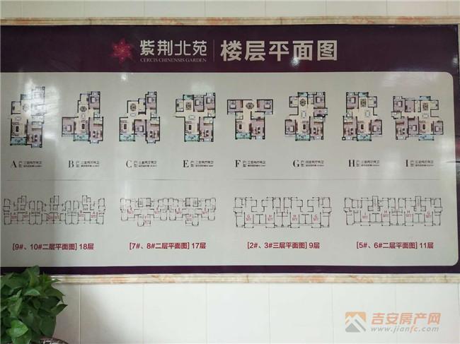 紫荆北苑楼层平面图-吉安房产网