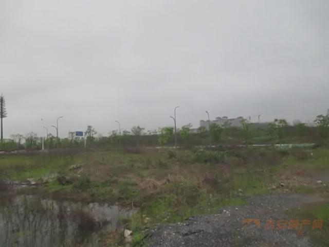 地块现场图-吉安房产网
