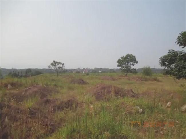 DDC2019002地块现场图-吉安房产网