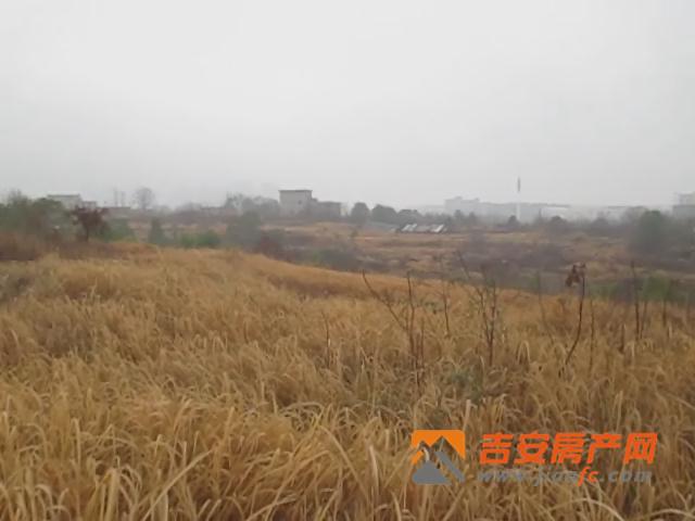 吉安房产网-吉州工业园区控规B24-1地块现场图