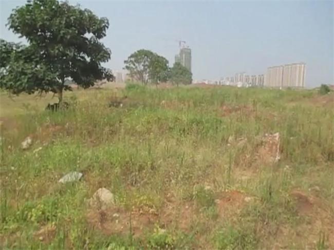 吉安房产网-河东经济开发区A4-2地块现场图
